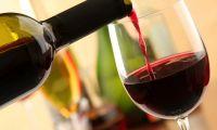 Festa del Vino, a Macchia d'Isernia la 43esima edizione. Tribute band a Celentano