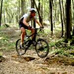 La Matese Mountain Bike, il comune matesino di Spinete e i 126 bikers partecipanti hanno […]