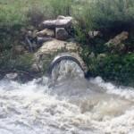 """""""Le piogge di questi giorni hanno riportato alla luce un gravissimo caso di inquinamento ambientale […]"""