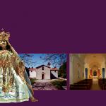 Svolta ieri, domenica 3 gennaio, presso il Santuario Mariano Madonna delle Stelle a sant'Angelo Limosano […]
