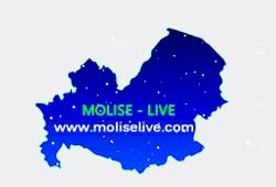 molise live