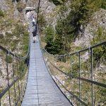 Per chi soffre di vertigini forse potrebbe non essere consigliatoandare oltre il Sentiero dei Fringuelli, […]