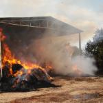 ORE 16 – Uno spaventoso incendio si è sviluppato nel primo pomeriggio di oggi in […]