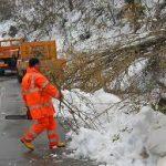 In Molise restano chiusi alcuni tratti stradali in provincia di Campobasso, in particolare sulle strade […]