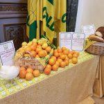 L'intensità del fenomeno dell'Agromafia nel settore agroalimentare in Molise risulta essere basso tanto in provincia […]